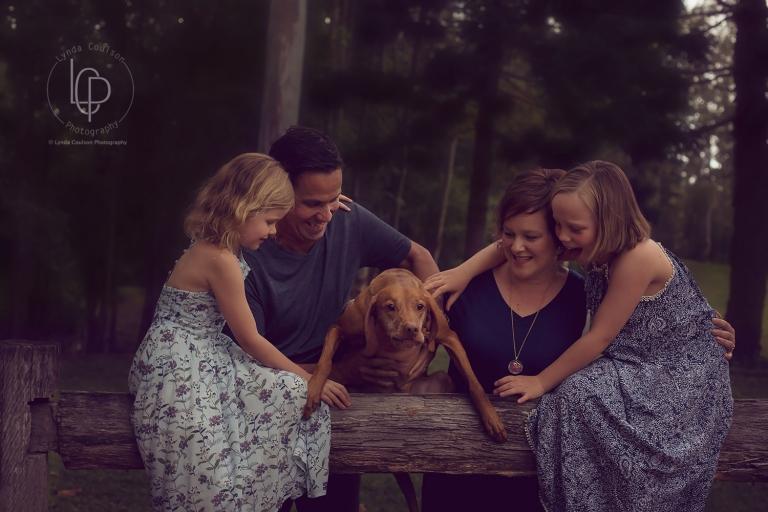 dog life love